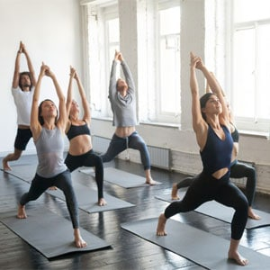 formación-yoga-barañain-shivashakti